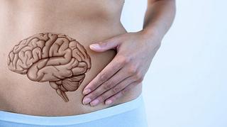 腸は第2の脳どころではない腸が持つ10の優れた機能とは?脳1割、腸9割で人生はもっと上手くいく!!