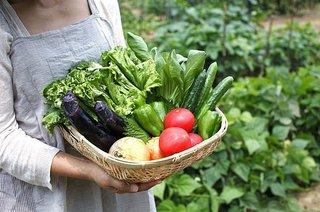 春野菜の健康効果を高める「3つの食べ合わせ」をご紹介!