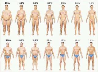 ライザップに行かなくても理想のボディは自分で出来る!体脂肪を効率よく減らす15の方法!!