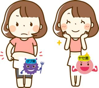 肥満でお悩みの方必見!肥満はデブ菌の量を減らせば改善できる!?