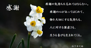 image.5-86036.png