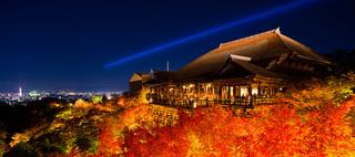 京都の紅葉ライトアップが美しすぎる!! 幻想的な雰囲気に包まれること間違い無しです!