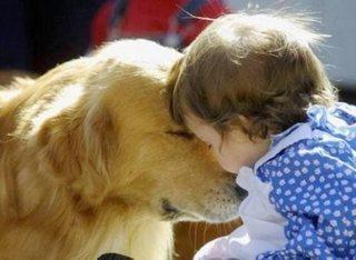 犬とあなたの健康にまつわる、12の素敵な関係