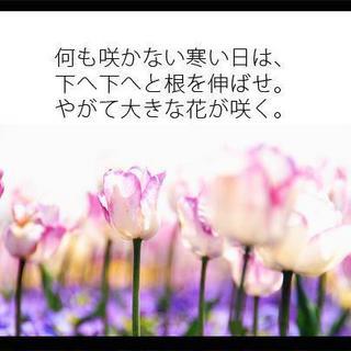 c0018311_1022360.jpg