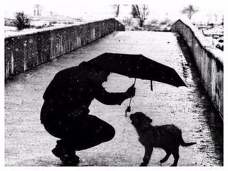 優しさは、最高の才能