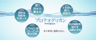 【プロテオグリカンはヒアルロン酸やコラーゲン以上の保湿、保水力】